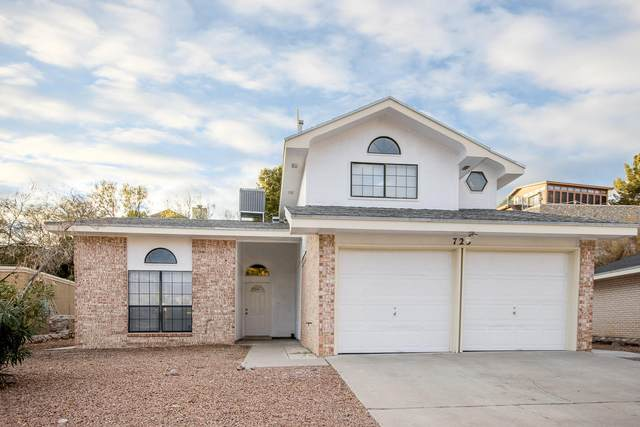 725 Villa Vanessa Drive, El Paso, TX 79912 (MLS #839555) :: Preferred Closing Specialists