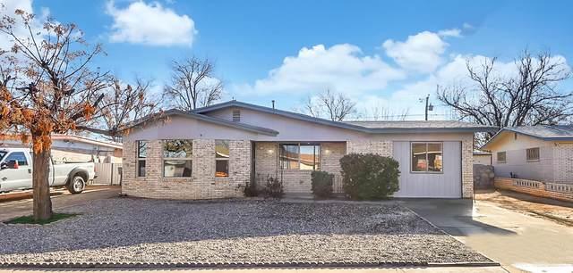 8412 Reindeer Avenue, El Paso, TX 79907 (MLS #839583) :: Jackie Stevens Real Estate Group brokered by eXp Realty