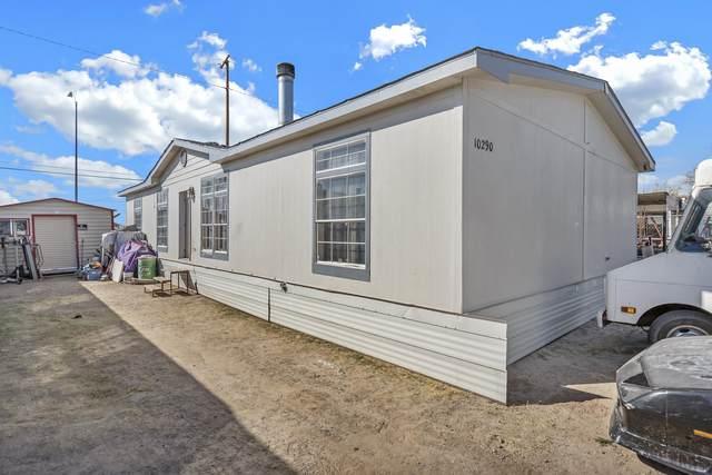 10290 Nirmal Drive, Socorro, TX 79927 (MLS #839593) :: Jackie Stevens Real Estate Group brokered by eXp Realty