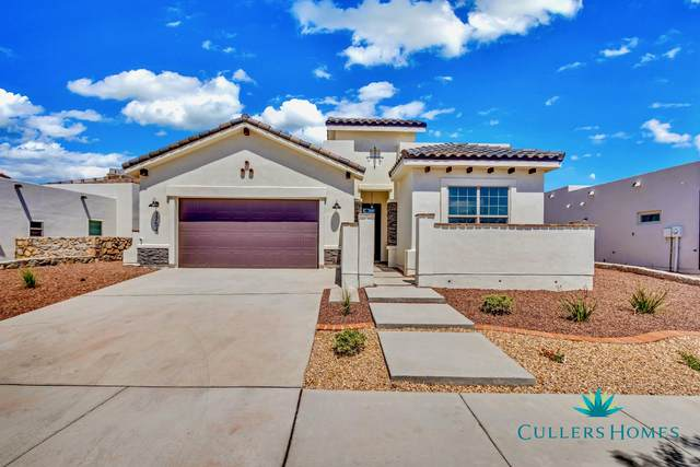 309 Emerald Rise Drive, El Paso, TX 79928 (MLS #839605) :: Jackie Stevens Real Estate Group brokered by eXp Realty