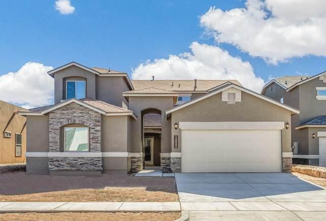14745 William Meshel Drive, El Paso, TX 79938 (MLS #839632) :: Mario Ayala Real Estate Group