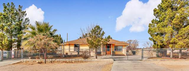 1474 Hereford Drive, El Paso, TX 79928 (MLS #839639) :: The Purple House Real Estate Group