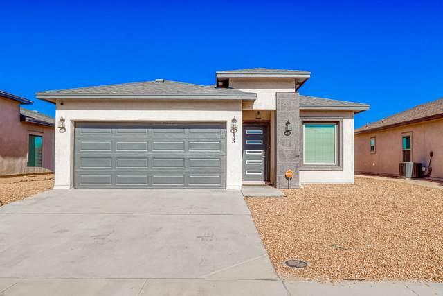 233 Flor Papagayo Way, El Paso, TX 79927 (MLS #839675) :: Preferred Closing Specialists