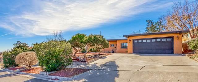 3308 Diamond Drive, El Paso, TX 79904 (MLS #839758) :: The Purple House Real Estate Group