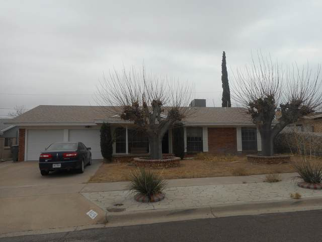 10220 Aggie Court, El Paso, TX 79924 (MLS #839760) :: The Purple House Real Estate Group