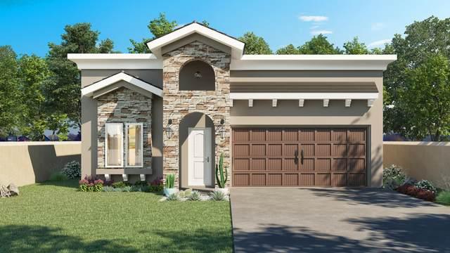 14916 William Meshel, El Paso, TX 79938 (MLS #839770) :: Jackie Stevens Real Estate Group brokered by eXp Realty