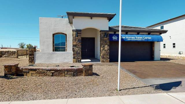 6229 Brazos River Street, El Paso, TX 79932 (MLS #839772) :: The Purple House Real Estate Group