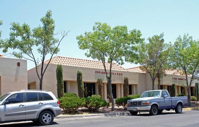 2311 N Mesa Street, El Paso, TX 79902 (MLS #839807) :: The Purple House Real Estate Group