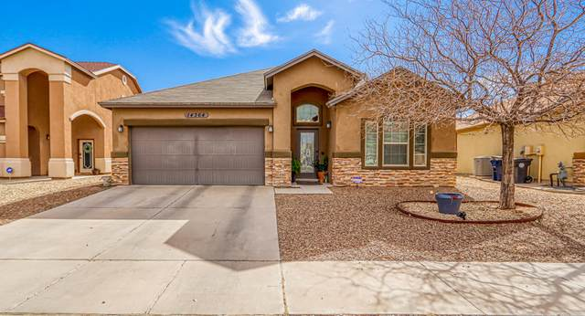 14364 Alma Point Drive, El Paso, TX 79938 (MLS #839915) :: The Purple House Real Estate Group