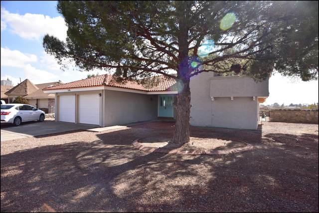 340 Higley Circle, Horizon City, TX 79928 (MLS #840006) :: Preferred Closing Specialists