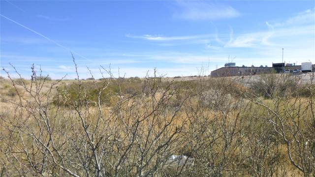 1740 N Horizon Avenue, El Paso, TX 79928 (MLS #840022) :: The Purple House Real Estate Group