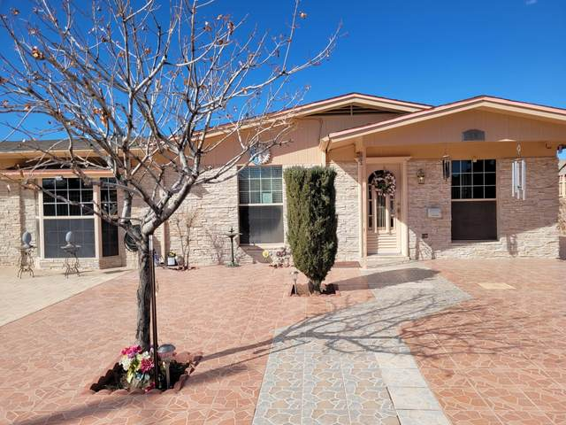 882 Mont Blanc Drive, El Paso, TX 79907 (MLS #840023) :: The Purple House Real Estate Group
