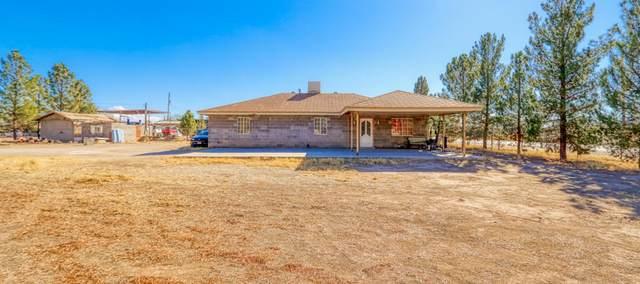 12799 Mi Acre Drive, San Elizario, TX 79849 (MLS #840140) :: Preferred Closing Specialists