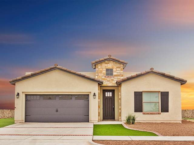 1727 Eased Street, El Paso, TX 79928 (MLS #840679) :: Preferred Closing Specialists