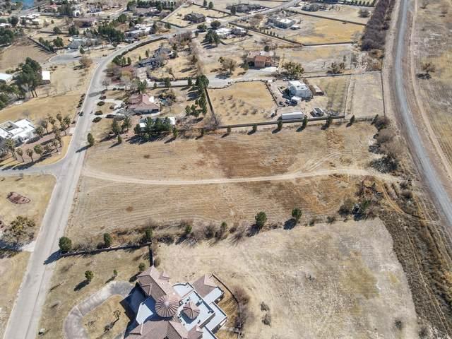 4255 Appaloosa Drive, Santa Teresa, NM 88008 (MLS #840706) :: The Purple House Real Estate Group
