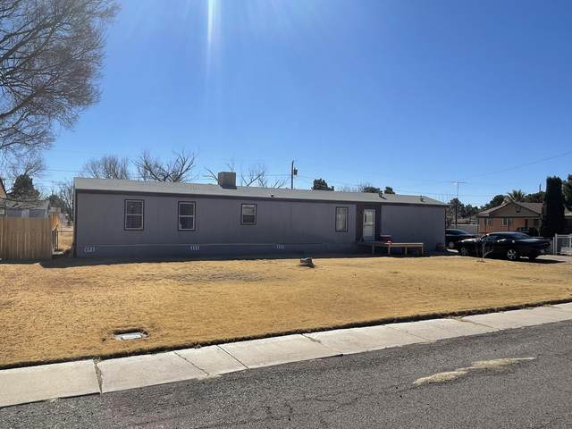 623 King James Avenue, Las Cruces, NM 88007 (MLS #840741) :: Jackie Stevens Real Estate Group brokered by eXp Realty