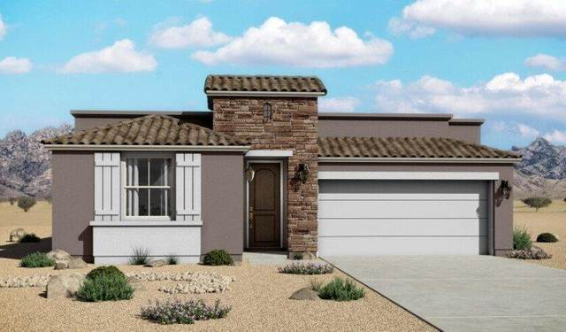 241 Emerald Sun Drive, El Paso, TX 79928 (MLS #840888) :: Mario Ayala Real Estate Group