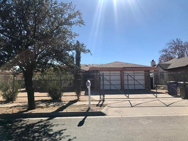 4800 Maureen Circle, El Paso, TX 79924 (MLS #840938) :: Preferred Closing Specialists