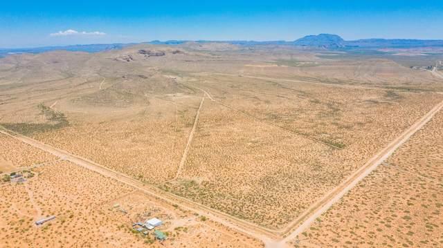 15099 Buckwheat Street, El Paso, TX 79938 (MLS #840998) :: Summus Realty