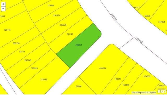 000A Norris, Horizon City, TX 79928 (MLS #841027) :: Mario Ayala Real Estate Group