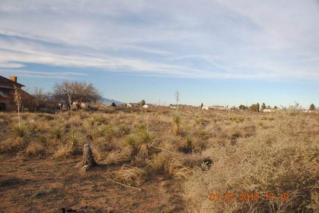 560 Oasis Drive, Chaparral, NM 88081 (MLS #841103) :: Preferred Closing Specialists