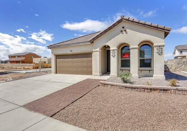 239 Herts Way, El Paso, TX 79928 (MLS #841192) :: Mario Ayala Real Estate Group