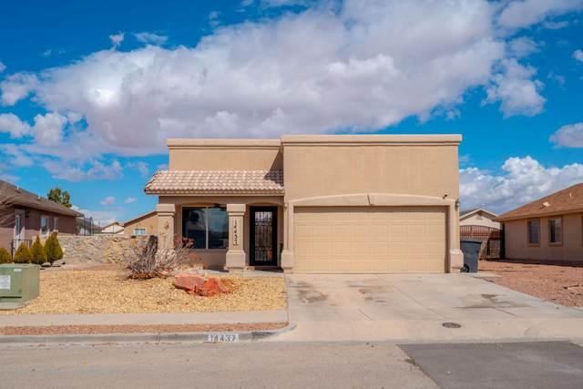 14437 Desert Ocotillo Drive, Horizon City, TX 79928 (MLS #841446) :: The Purple House Real Estate Group