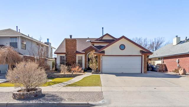 1109 Feather Hawk Drive, El Paso, TX 79912 (MLS #841539) :: The Purple House Real Estate Group