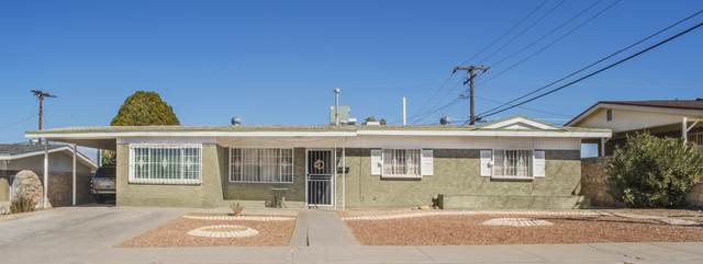 7827 Basswood Avenue, El Paso, TX 79925 (MLS #841571) :: The Purple House Real Estate Group