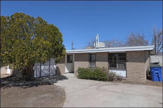 4624 Skylark Way, El Paso, TX 79922 (MLS #841572) :: The Purple House Real Estate Group
