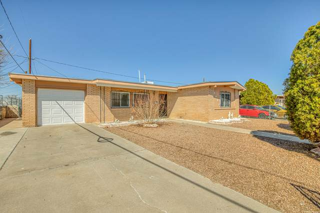5637 Salem Drive, El Paso, TX 79924 (MLS #841574) :: The Purple House Real Estate Group