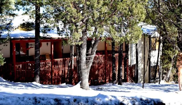 112 Vail Loop, Ruidoso, NM 88345 (MLS #841579) :: The Purple House Real Estate Group