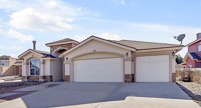 12636 Wolf Berry Drive, El Paso, TX 79928 (MLS #841584) :: Mario Ayala Real Estate Group