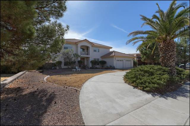 616 Wild Willow Drive, El Paso, TX 79922 (MLS #841588) :: The Purple House Real Estate Group