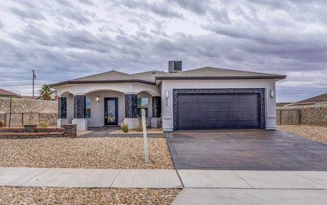 989 Abe Goldberg Drive, El Paso, TX 79932 (MLS #841593) :: The Purple House Real Estate Group
