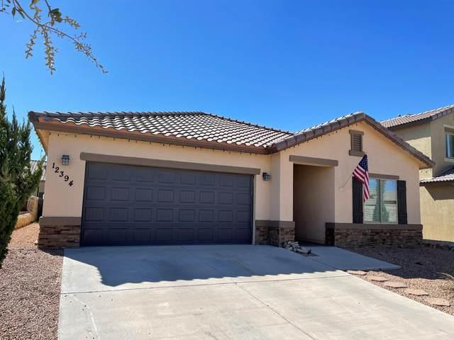 12394 Westbury, El Paso, TX 79928 (MLS #841748) :: Mario Ayala Real Estate Group