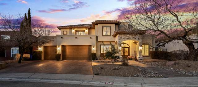 6489 Calle Placido Drive, El Paso, TX 79912 (MLS #841784) :: The Matt Rice Group