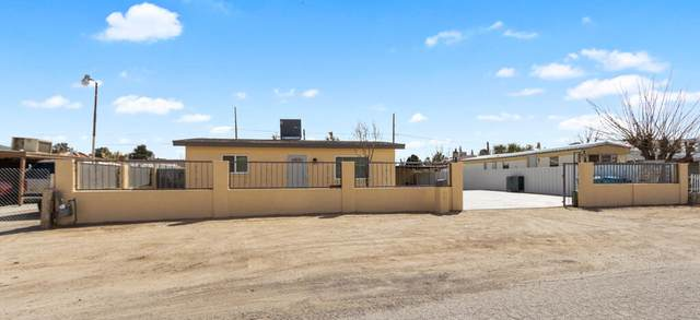 673 Bernice Court, Socorro, TX 79927 (MLS #841900) :: The Purple House Real Estate Group