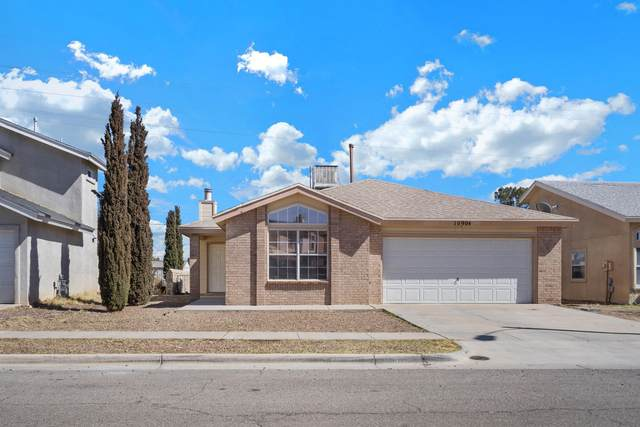 10904 Reef Sands Drive, El Paso, TX 79924 (MLS #841992) :: The Matt Rice Group