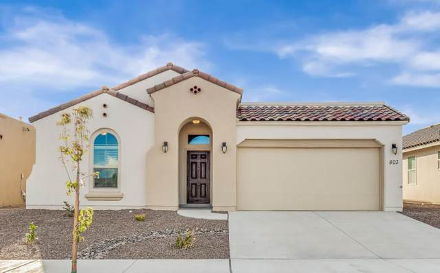 12620 Basing Court, El Paso, TX 79928 (MLS #841993) :: Mario Ayala Real Estate Group