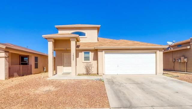 14227 Ranier Point Drive, El Paso, TX 79938 (MLS #842096) :: Mario Ayala Real Estate Group