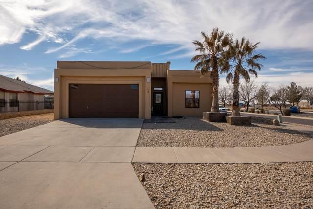 14300 Desert Shadow Drive, Horizon City, TX 79928 (MLS #842111) :: Mario Ayala Real Estate Group