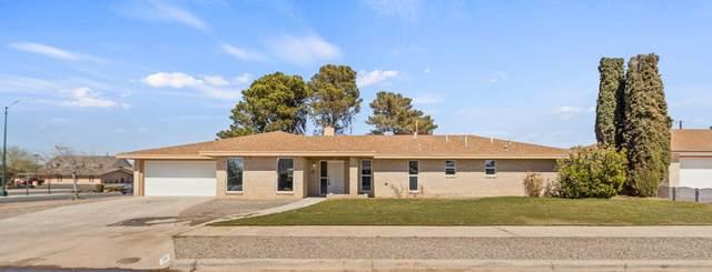 8801 Basil Court, El Paso, TX 79925 (MLS #842141) :: Summus Realty