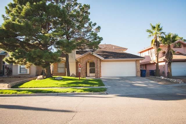 1461 Gene Torres Drive, El Paso, TX 79936 (MLS #842178) :: Preferred Closing Specialists