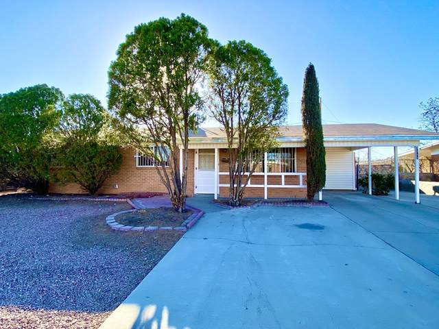 3311 Lorne Road, El Paso, TX 79925 (MLS #842190) :: The Purple House Real Estate Group