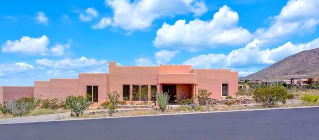 319 Coral Sky Lane, El Paso, TX 79912 (MLS #842202) :: Mario Ayala Real Estate Group