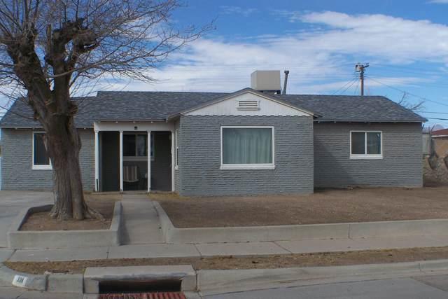 331 Mary Jeanne Lane, El Paso, TX 79915 (MLS #842208) :: Mario Ayala Real Estate Group