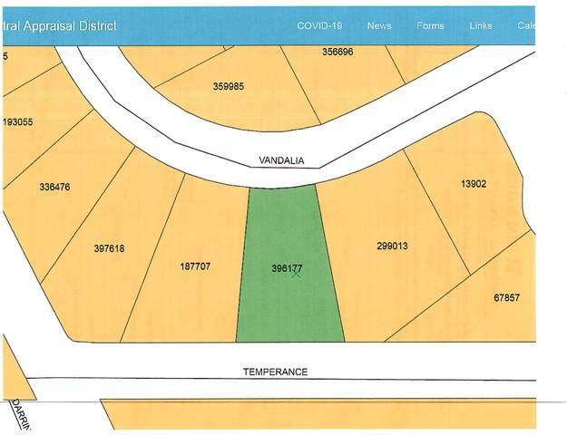 9 Temperance, Horizon City, TX 79928 (MLS #842265) :: Mario Ayala Real Estate Group