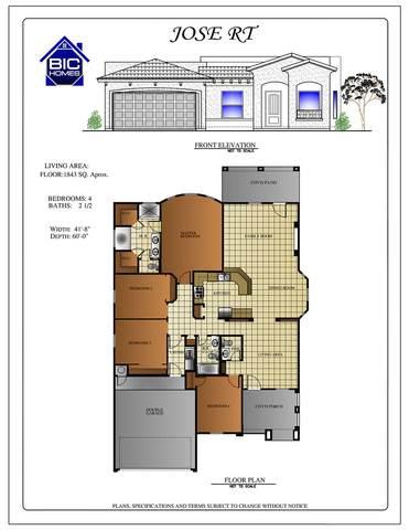 205 Isla Vista Lane, Horizon City, TX 79928 (MLS #842421) :: Summus Realty