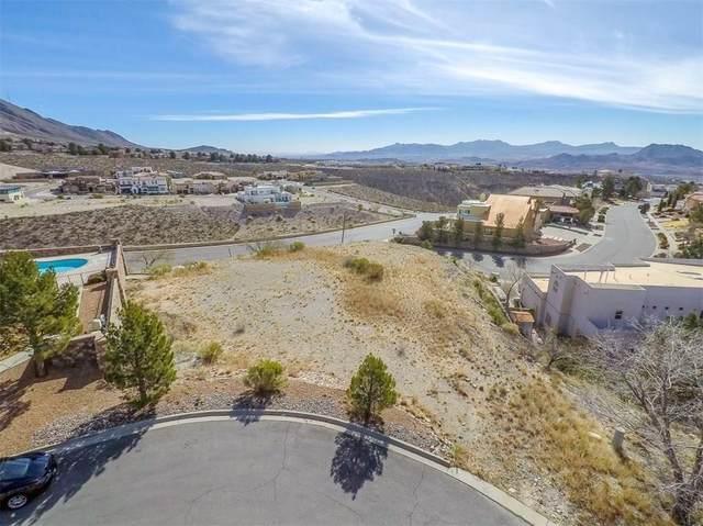 318 Amelia Drive, El Paso, TX 79912 (MLS #842475) :: Summus Realty
